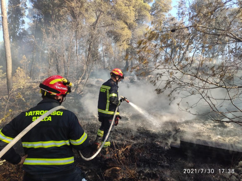 Požar u Milni na Braču