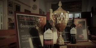 Pelješki vinogradar: Obiteljska tvrtka koja stvara šampionska vina