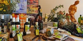 Postira: U sklopu uljare otvorili kušaonicu i prezentacijsko-edukacijski centar o bračkom maslinarstvu