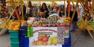 Ekološki uzgoj mandarina, limuna i smokava