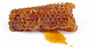 Dinara med: Naš kraj je idealan za pčelarstvo