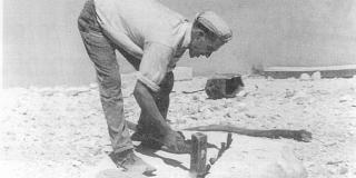 DALMATINSKO EVANĐELJE: Berba kamena i diladuri