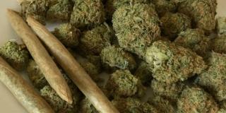 Holy: Ako SDP dobije priliku upravljati državom, u prvih mjesec dana donijet će zakon o legalizaciji marihuane