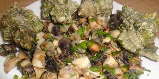 DALMATINSKA KUŽINA: Volci na salatu