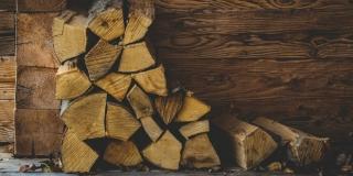 Ukrao 34 stabla bora