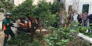 FOTOGALERIJA Počelo uređenje kultnog vrtla u Dominisovoj