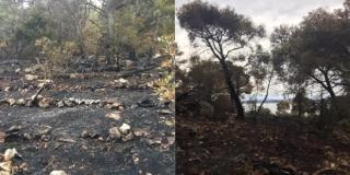 VIDEO Pogledajte kako nakon tjedan dana gašenja izgleda požarište u Milni