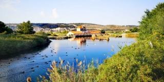 FOTOGALERIJA Očišćen krajobraz Doline Blaca na Braču i rezervat Pantan kod Trogira