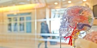 10 simptoma koji ukazuju na početak Alzheimerove bolesti; Jedan je posebno vidljiv