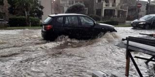 Dnevna doza makarskog nereda: Grad pliva u fekalijama!
