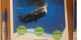 COVID-19 nije prekinuo borbu protiv plastike u morima