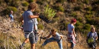 U prvom vikendu ovogodišnje Boranke volonteri zasadili 4000 stabala u sadnicama i sjemenu