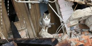 Dva i pol mjeseca od potresa 1650 objekata još čeka prvi pregled statičara