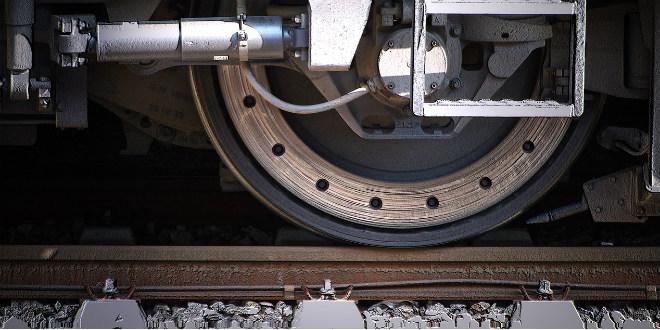 Strojovođa naletio vlakom na srnu, policija je obezglavljenu strvinu pronašla u prtljažniku njegova automobila