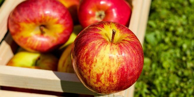 Zašto ne biste isprobali ove ukusne palačinke s jabukama?