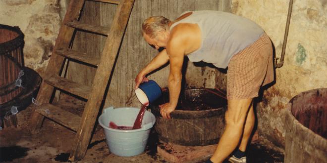 DALMATINSKO EVANĐELJE: Jematva i grožđe, konoba i vino