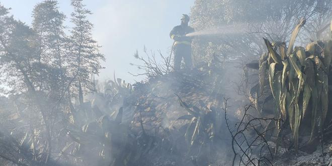 VIDEO Grom izazvao manji požar na Hvaru