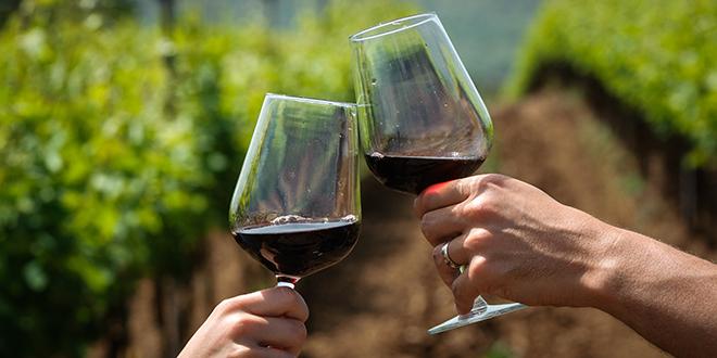 Još dva dana za prijave: Provedi subotu u jematvi i dobij svoje vlastito vino!