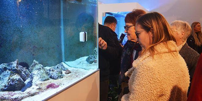 HRVATSKI POMORSKI MUZEJ Uživalo se u obnovljenom akvariju, retro delicijama i pjesmi Borisa Oštrića