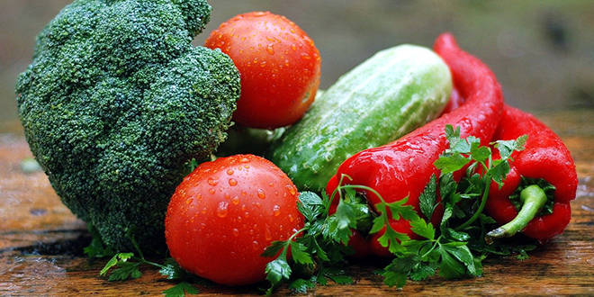 Počupao mu više od tisuću sadnice rajčice, tikvica i lubenica