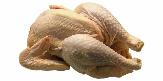 OPREZ Salmonela u poljskoj piletini