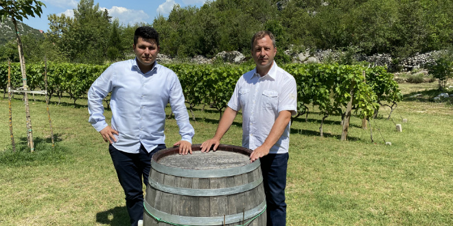 PRANIĆ UPOZORAVA: Vinarstvo i vinogradarstvo, najvažnije poljoprivredne grane u Dalmaciji, su na koljenima
