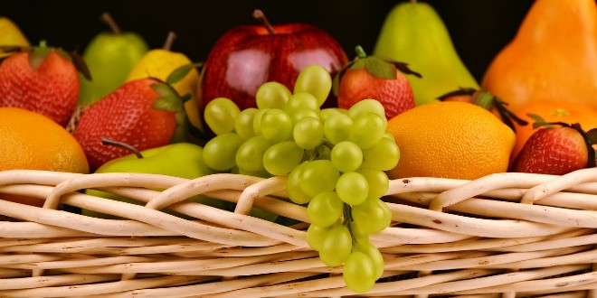 Kompletna organska i mineralna gnojidba voćaka i vinograda s osvrtom na gnojidbu agruma