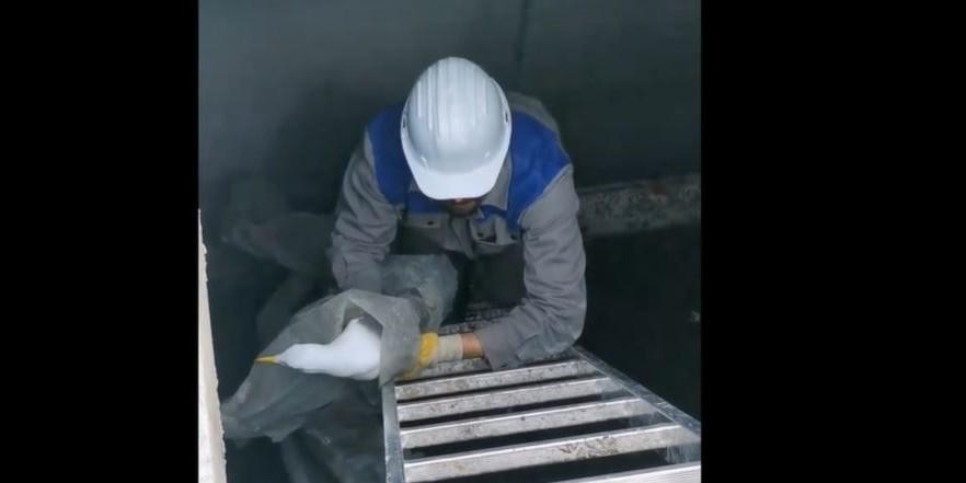 VIDEO Radnici splitskog škvera spašavali galeba