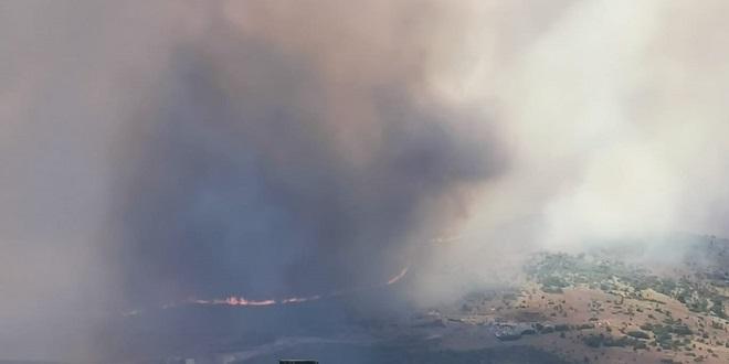 FOTO/VIDEO: GORI NA TROGIRSKOM PODRUČJU Požar se nekontrolirano širi, 100 vatrogasaca i zračne snage na terenu