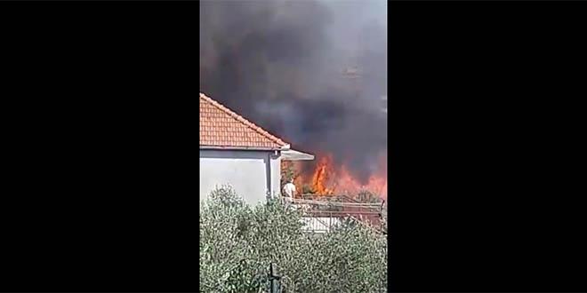 Požar izbio na Bilom brigu i među kućama