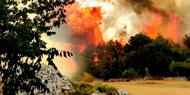 ZAVRŠETAK SEZONE: 'Po broju požara je bila gora od prošle, ali su svi bili brzo uočeni i stavljeni pod kontrolu'